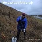 Новые орехи у дороги поселок Комсомольский -югозападный микр